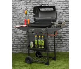 Campingaz Expert 2 Deluxe - Barbecue a pietra lavica a gas