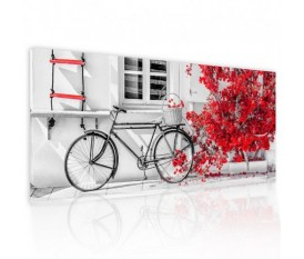 BIKE BOUGANVILLE RED - QUADRO DIPINTO ASTRATTO PICTURES