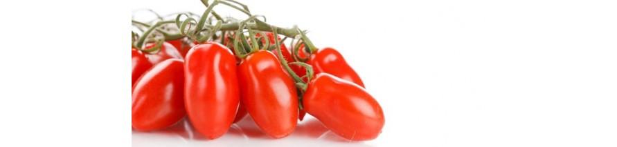 Lavorazione Pomodori